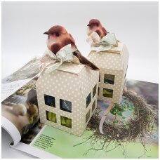 Saldumynų pilnas namelis su paukšteliu